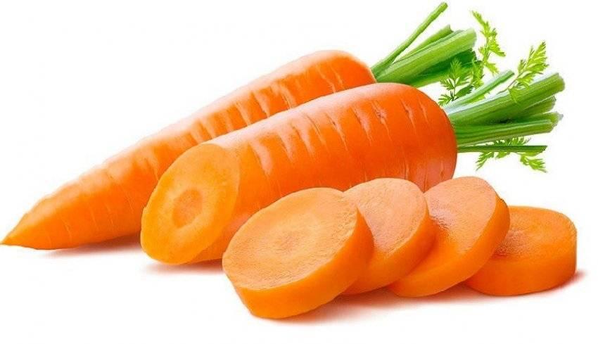 Морковь сырая — какие витамины содержит