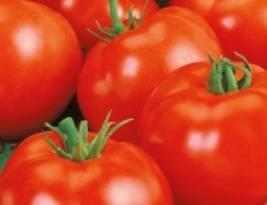 Томаты красным красно f1 - описание, цена семян и отзывы кто сажал