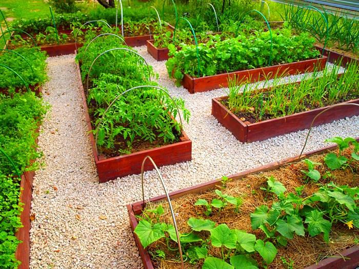 Грядки для ленивых: фото и рекомендации по созданию огорода - огород, сад, балкон - медиаплатформа миртесен