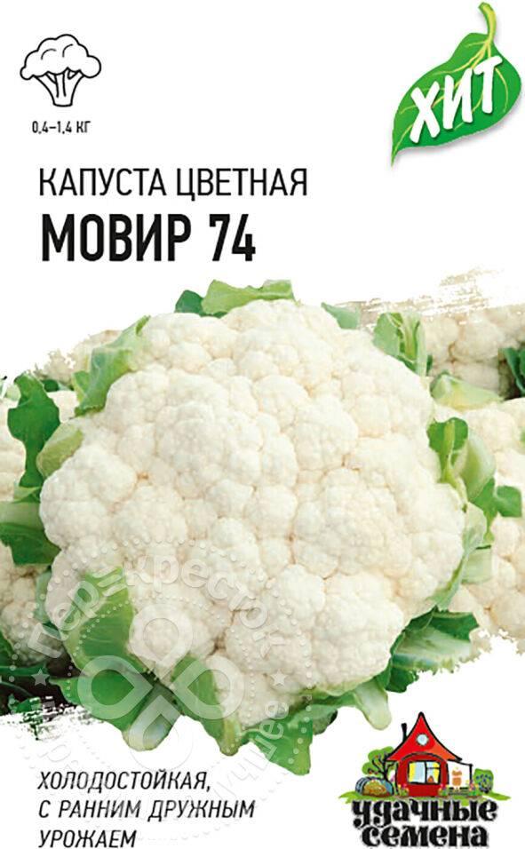 Цветная капуста мовир 74 f1: отзывы о выращивании, характеристика и описание сорта, фото семян, посадка и уход