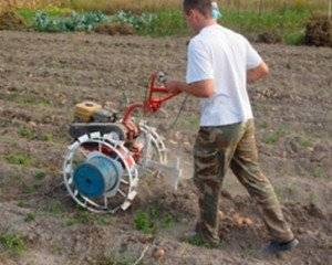 Прополка картофеля мотоблоком: посадка, уход и обработка картошки