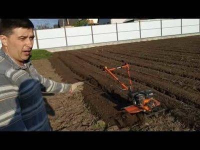 Прополка междурядий картофеля мотоблоком: видео