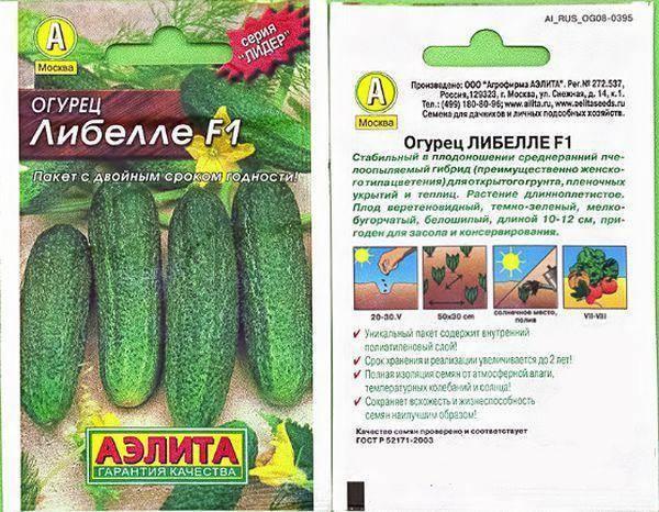 Огурец либелле f1: описание и урожайность сорта, фото, отзывы