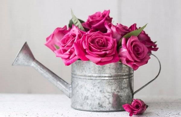 Как сохранить розы в вазе дольше всего: эффективные способы