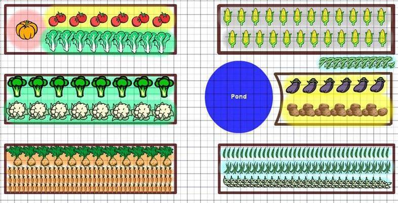 Севооборот овощных культур на дачном участке: таблица и схема