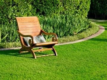 Создание газона для ленивых и правильный уход за ним