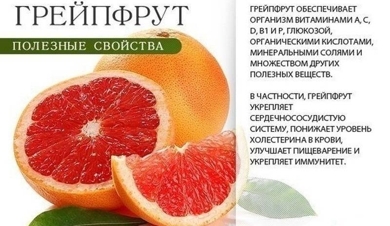 Польза и вред грейпфрута + лечебные свойства для мужчин и женщин