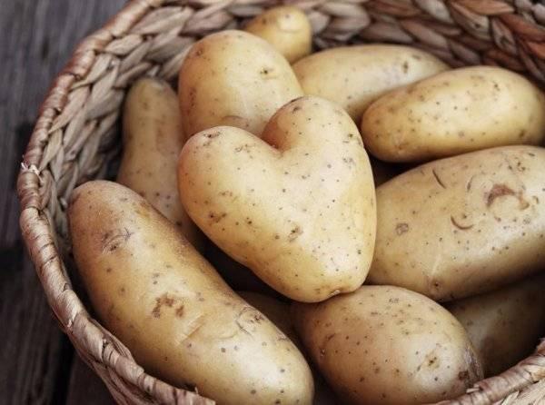 Дельные и простые советы:как хранить картошку в квартире