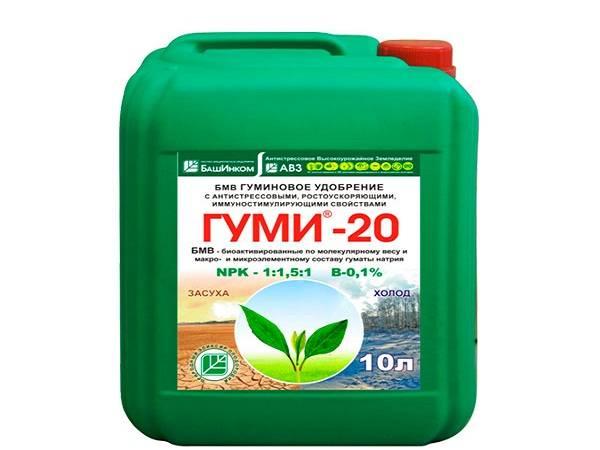 Теория и практика применения гуминовых удобрений: способы обработки растений, эффективность жидких подкормок
