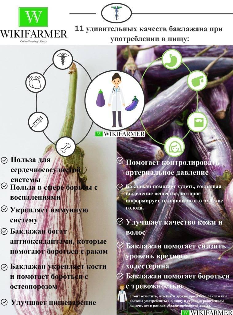 Баклажаны польза и вред: витамины в баклажанах что содержиться состав продукта калорийность на 100 грамм противопоказания к применению