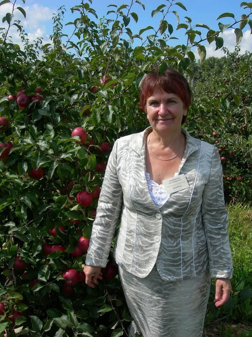 Почему яблоня не цветет и не плодоносит - причины, решение