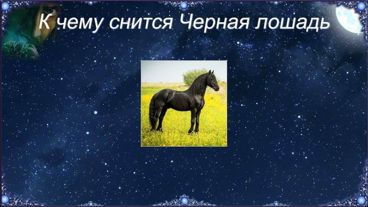 Сонник лошадь скинула. к чему снится лошадь скинула видеть во сне - сонник дома солнца