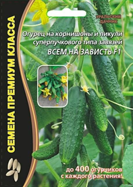 Мэлс f1 – ранний пучковый огурец. характерные свойства культуры, правила выращивания