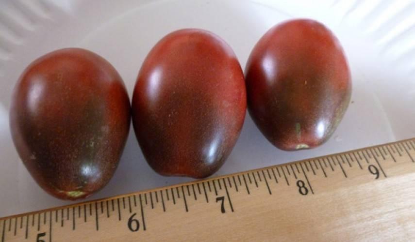 Вкусная экзотика — характеристика и описание сорта помидоров «чёрный мавр»