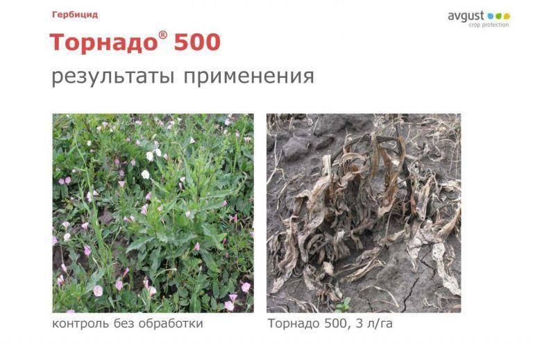 Гербицид торнадо от сорняков, инструкция по применению, преимущества