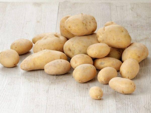 Картофель кемеровчанин: описание сорта, посадка, уход, фото, отзывы