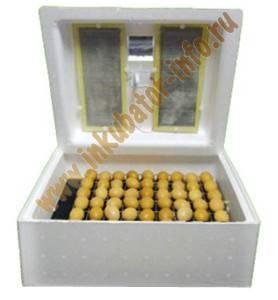 Инкубация куриных яиц: режим, таблица температуры и влажности, а также отличия в выращивании птенцов в механическом и пенопластовом устройствах selo.guru — интернет портал о сельском хозяйстве