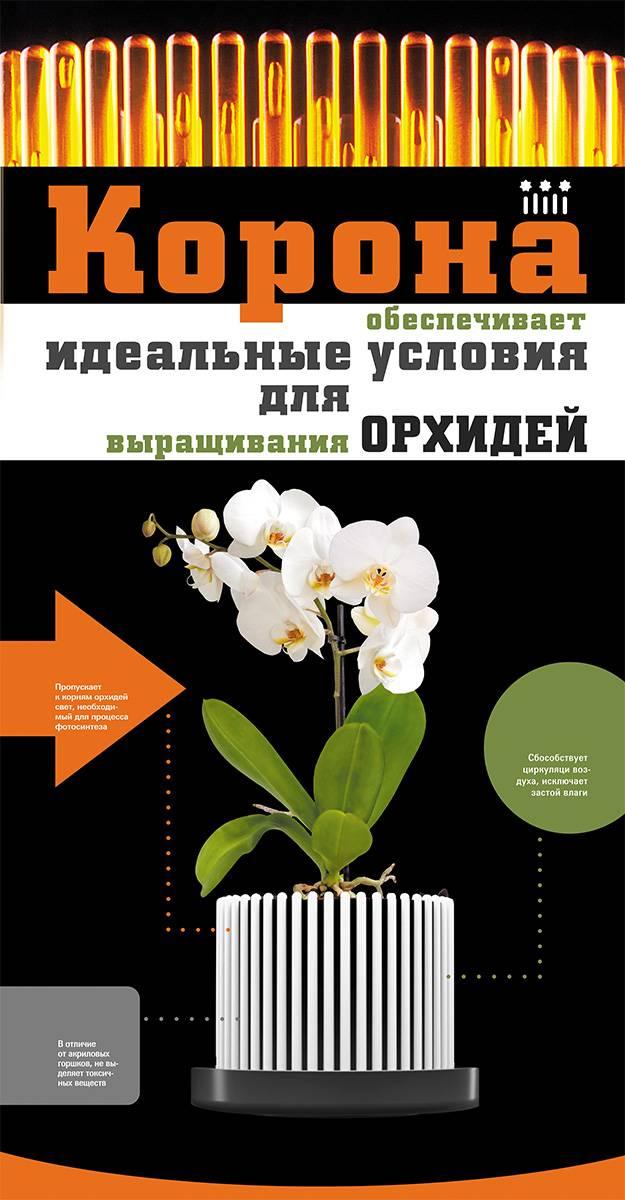 Какие горшки для орхидей нужны, как правильно выбрать емкость и посадить растение, фото, видео