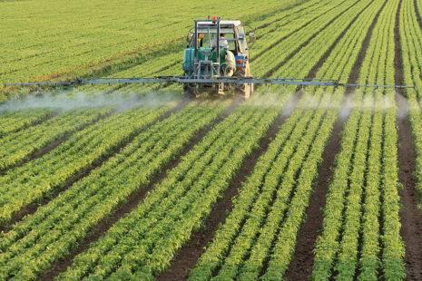 Лазурит от сорняков на картошке: инструкция по применению