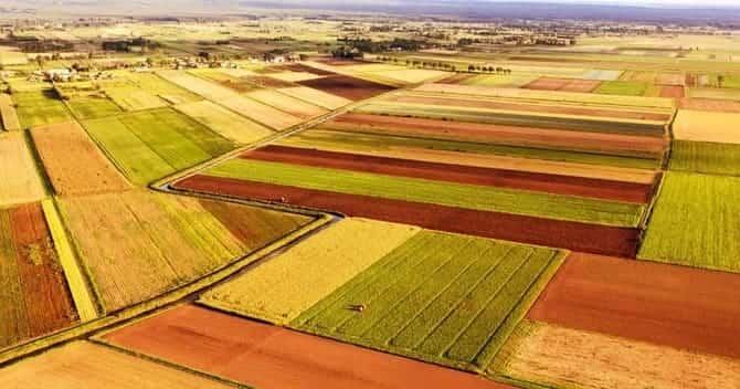 Правильный севооборот на огороде — что после чего можно сажать » око планеты информационно-аналитический портал