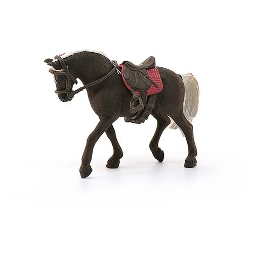 Американские породы лошадей: фото, виды, характеристики, описание и история
