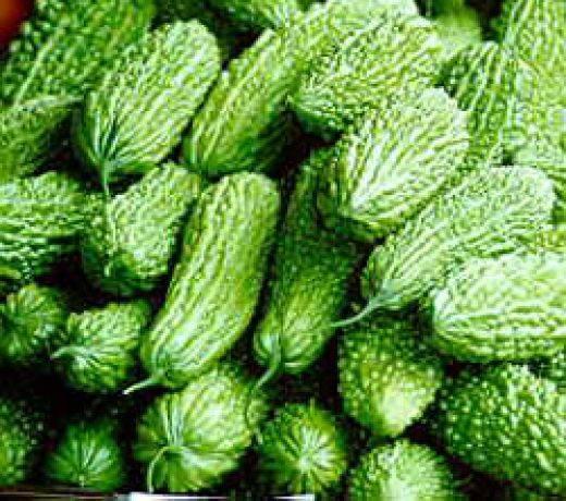 Момордика — фрукт или овощ?
