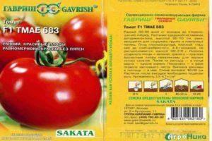 Томат багира: характеристика, описание, фото русский фермер