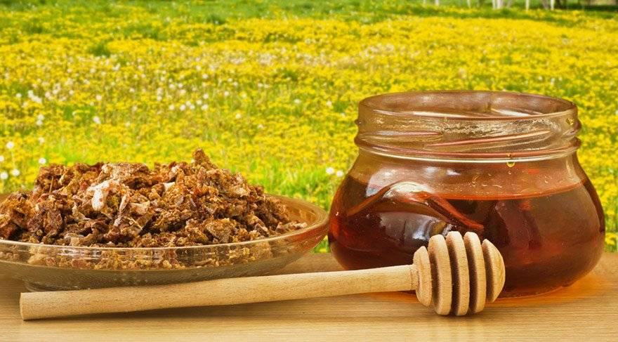 Как отличить настоящий мед от поддельного?