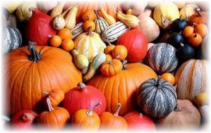 Тыква и терминология: фрукт, ягода или овощ
