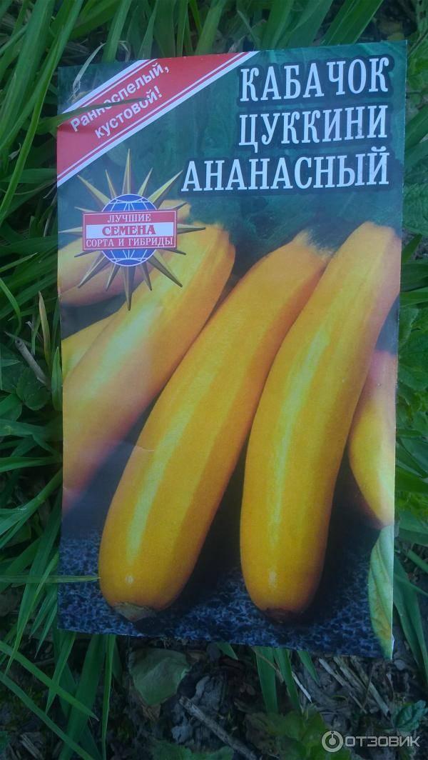 Кабачок желтоплодный: описание, фото, отзывы