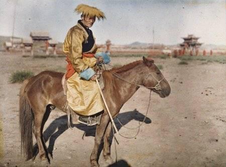 Калмыцкая порода лошадей: описание и фото   мои лошадки