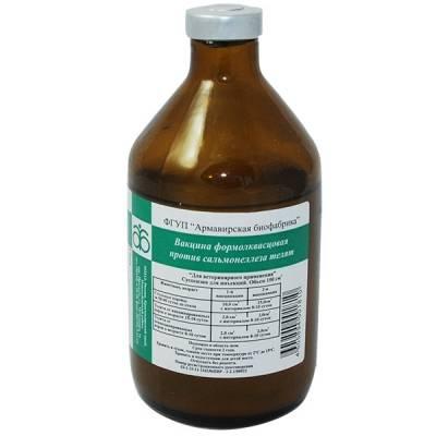 Как лечить сальмонеллез у телят