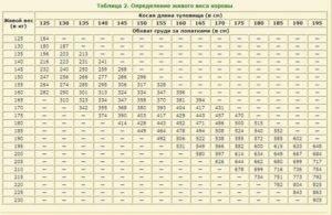 Вес быка: средняя масса, таблицы определения и методики измерения. 140 фото и видео инструкция для начинающих