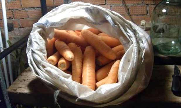Как сохранить морковь в теплом погребе: инструкция, какова пригодность к долгому держанию, а также немного о полезных свойствах этого овоща selo.guru — интернет портал о сельском хозяйстве