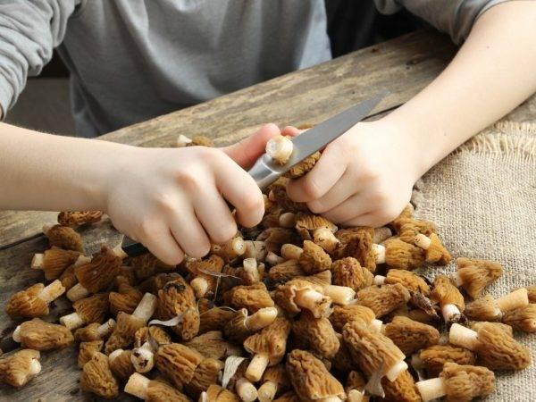 Как чистить грибы в домашних условиях
