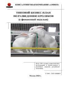 Бизнес по разведению кроликов - план, как начать с нуля