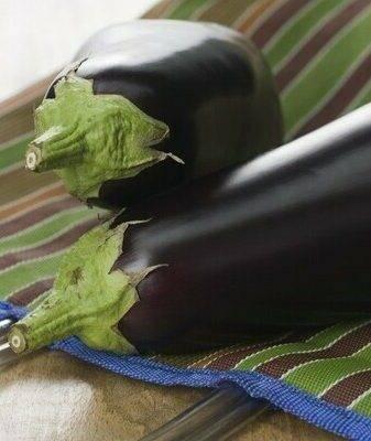Лучшие сорта баклажанов для открытого грунта с фото и описаниями
