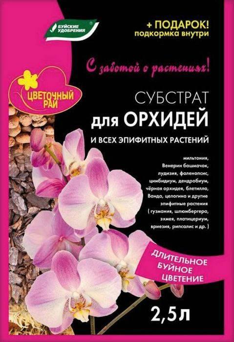 Все о грунте для орхидей – нужен ли, каким он должен быть, как его сделать