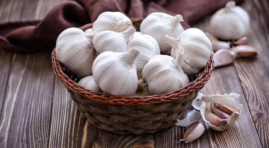 Посадка озимого чеснока осенью: правила и полезные советы
