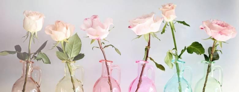 Чтобы розы стояли дольше достаточно знать всего 5 секретов хранения