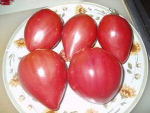 ✅ отзывы о томате розовый спам. опытные огородники рекомендуют — томат «розовый спам»: описание сорта и фото - cvetochki-ulyanovsk.ru