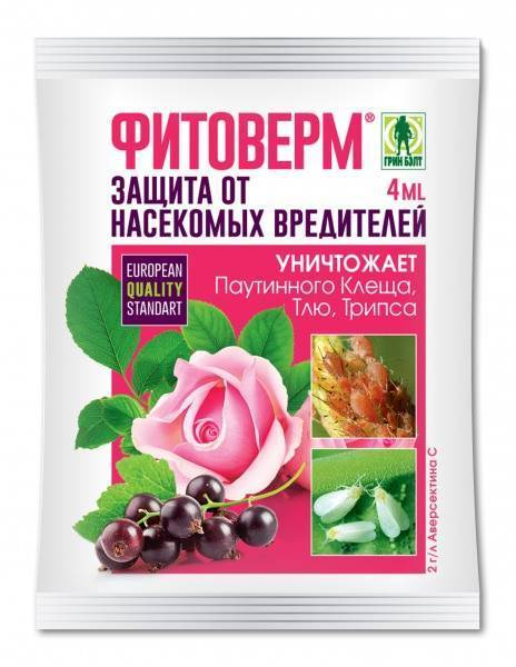 Фитоверм для комнатных растений: полная инструкция по применению