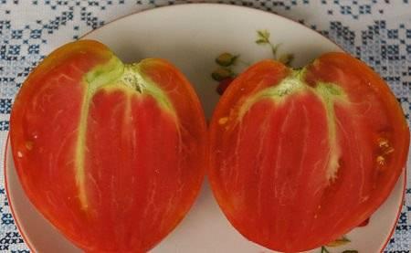 Сорт томата орлиный клюв - описание, фото, отзывы