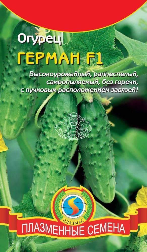 Огурец аллигатор f1: отзывы, фото, описание сорта, выращивание
