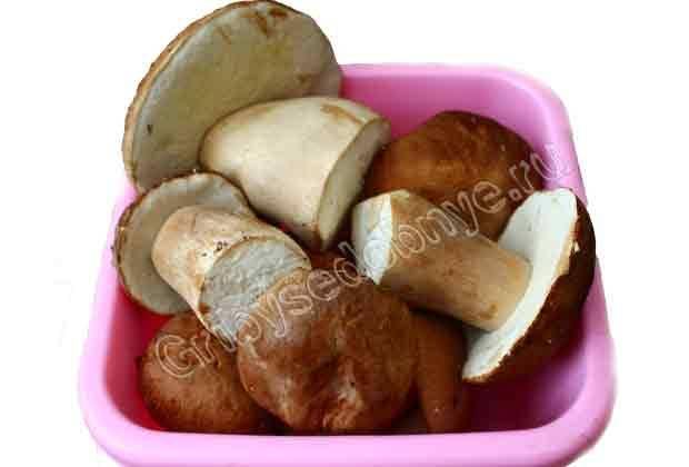 Как морозить белые грибы на зиму в морозилке, видео. лучшие рецепты заморозки белых грибов