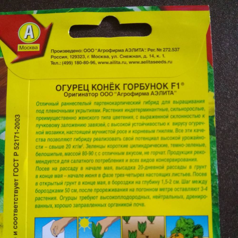 Лучшие сорта пучковых огурцов для открытого грунта и теплиц, и их выращивание