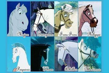 Как выбрать клички для лошадей