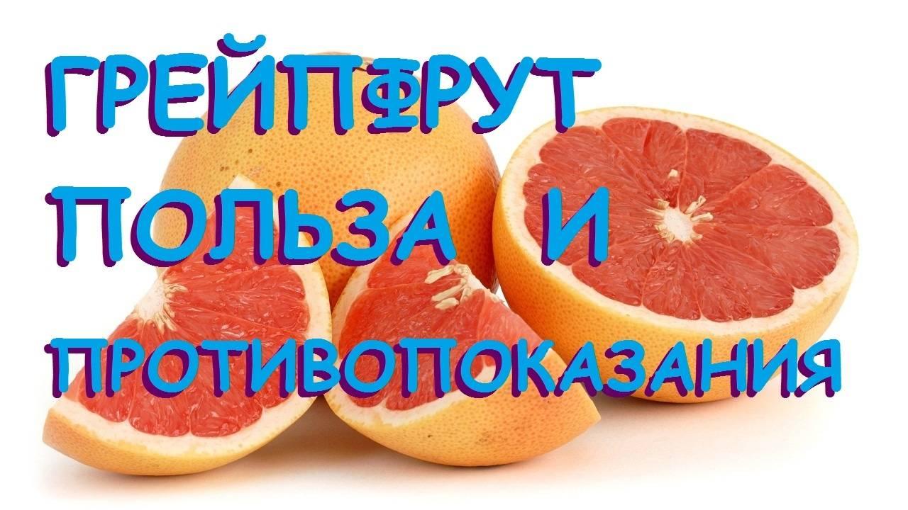 Цитрусовые: виды, состав и польза фруктов | food and health