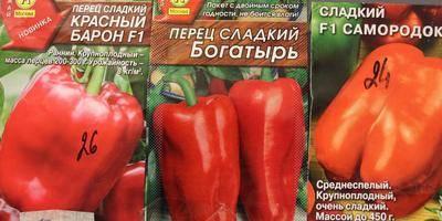 Какое понижение температуры выдерживают томаты