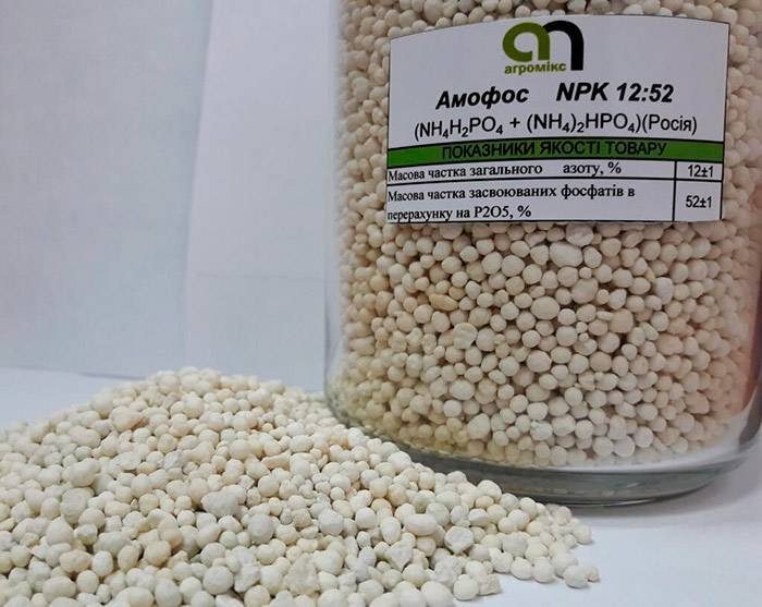 Удобрение аммофоска: что это такое, состав, применение, как вносить - почва.нет